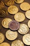 Bitcoin moneta & marihuany moneta Fotografia Stock