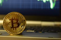 Bitcoin money on computer laptop, Monitoring the exchange rate and investment in bitcoins. Coin bitcoin on a laptop. Exchange cryptocurrency quotes on the laptop stock image
