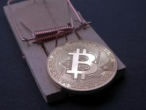 Bitcoin on mouse trap. Bitcoin ready to get caught in a  mouse trap on black background. Bitcoin investing stays a risky business Royalty Free Stock Photography