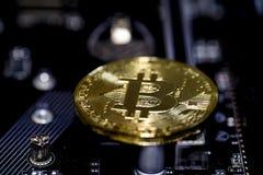 Bitcoin mynt Royaltyfri Bild