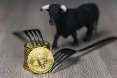 Bitcoin obtenant le nouveau changement dur de fourchette, la pièce de monnaie d'or physique de Crytocurrency avec la fourchette e images libres de droits