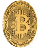Bitcoin odosobnienia złocisty biel Obrazy Royalty Free