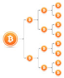 Bitcoin organization tree chart Stock Photos