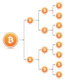 Bitcoin organization tree chart Stock Photos