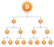 Bitcoin organization tree chart Stock Images