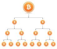 Bitcoin organization tree chart Stock Images