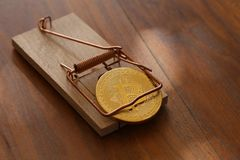 Bitcoin is a mousetrap. Bitcoin. Physical bit coin. Digital currency. Cryptocurrency Royalty Free Stock Photography