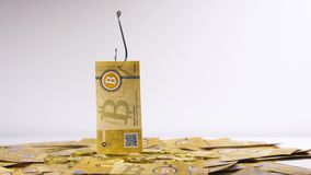 Bitcoin Podnosił up na haczyku od banknotów i monet zbiory wideo
