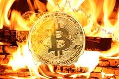 Bitcoin que queima-se na fogueira imagem de stock royalty free
