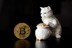 Bitcoin single coin with a cat. And pot of gold Stock Photo