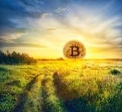 Bitcoin sob a forma do sol de aumentação fotos de stock
