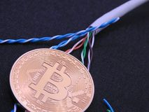 Bitcoin and UTP cable Royalty Free Stock Image