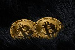 Bitcoin virtuale dei soldi Immagine Stock