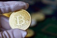 Bitcoin w ręce, wojna bitcoin, ciągnie złotą monetę z ręką ręka, na bokeh, biel, błękit, purpury lekki tło, bitcoins obrazy royalty free