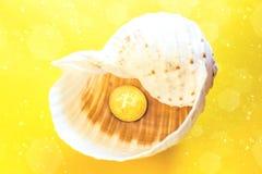 Bitcoin wakacje na plaży z seashells zdjęcia stock
