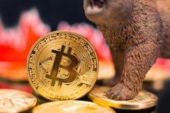 Bitcoincrypto prijsneerstorting à la baisse royalty-vrije stock foto