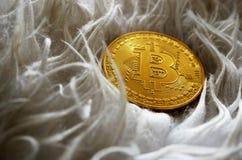 Bitcoinmuntstuk op bontachtergrond stock foto