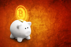 Bitcoins сбережений в piggy банке монетки Стоковые Фотографии RF