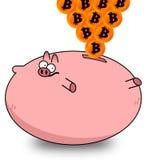 Bitcoins Fotografia Stock Libera da Diritti