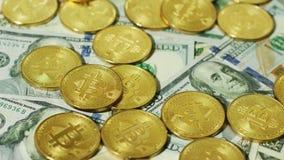 Bitcoins de oro brillantes con los billetes de banco almacen de video