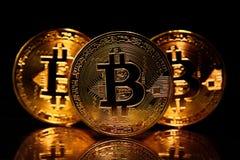 Bitcoins dorati isolati sul nero Fotografia Stock