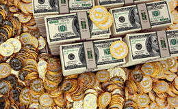 Bitcoins dorato e dollari Immagini Stock