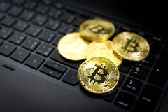 Bitcoins dourado no fundo do teclado de computador Foto de Stock Royalty Free