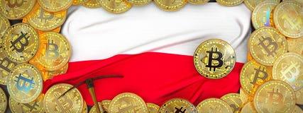Bitcoins guld runt om den Polen flaggan och spetshacka på det vänstert 3d dåligt Arkivbild