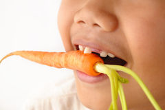 Bite baby carrot Royalty Free Stock Image