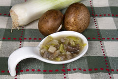 Bite of Leek and Mushroom Soup Royalty Free Stock Image