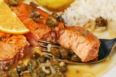 Bite of salmon piccata with creamy lemon caper butter sauce royalty free stock images