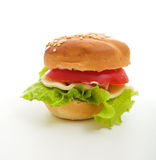 Bite size hamburger Stock Images