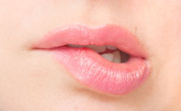 Bite your lip pink. Close-up bite your lip pink Royalty Free Stock Photo