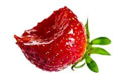 Biten jordgubbe royaltyfri bild