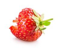 Biten jordgubbe royaltyfria foton