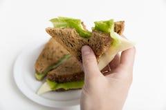 Biten ost- och grönsallatsmörgås i hand, hel smörgås på wh arkivbild