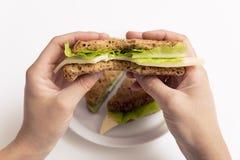 Biten ost- och grönsallatsmörgås i hand, hel smörgås på wh arkivbilder