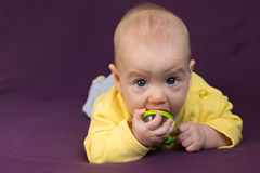Biting baby. Infant biting the rattle. Purple background Royalty Free Stock Images
