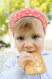 Biting Biscuit Royalty Free Stock Photo
