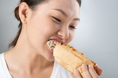 Biting hot dog Stock Photography