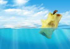 Bitit äpple som svävar på vatten, behållarföroreningbegrepp Arkivfoton