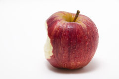 The bitten apple Royalty Free Stock Photography