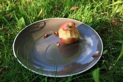 Bitten apple on plate Stock Photo