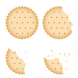 Bitten chip biscuit cookie, cracker vector set. Baked biscuit on white background, illustration of bitten biscuit vector illustration