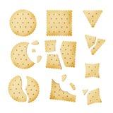 Bitten Chip Biscuit Cookie Vector. Cracker In Different Shapes. Bitten Chip Biscuit Cookie Vector. Cracker Different Shapes vector illustration