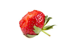 Bitten Fresh Red Strawberry Isolated On The White Background Royalty Free Stock Photography