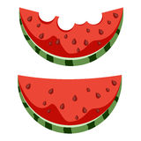 Bitten slices of watermelon. A set of elements.  white background. Stock Image