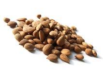 Bitter apricot kernels Stock Image