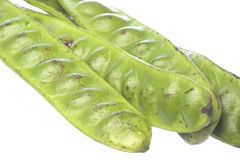 Bitter Bean Pods Isolated Stock Photo