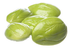 Bitter Beans Isolated Stock Image
